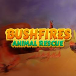 Bushfires: Animal Rescue